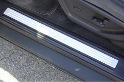 Trailblazer 02+ Door Sills